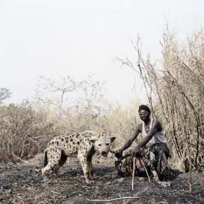 hyenaman1
